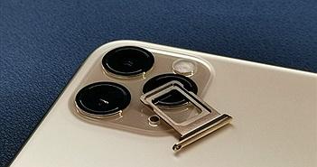 Dùng iPhone 11 hai sim, mua hàng xách tay từ nước nào?