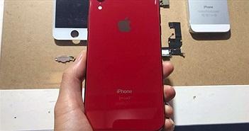 """Ảnh trên tay iPhone Xr màu đỏ vừa """"bay"""" về Việt Nam"""