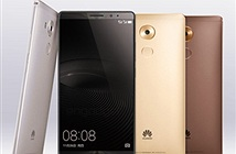 Huawei chính thức trình làng phablet Mate 8