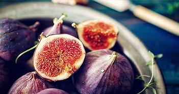 Liệu có côn trùng trong quả sung chúng ta ăn không?