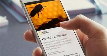 Các nhà xuất bản kiếm tiền từ Facebook và Google như thế nào?
