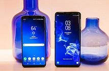 Cập nhật giá bộ đôi siêu phẩm Galaxy S9/S9+ tại Việt Nam