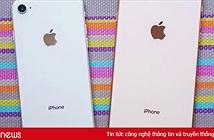 Không phải iPhone 9 giá rẻ, iPhone 9 Plus mới là chiếc iPhone quốc dân mà người Việt chúng ta tìm kiếm