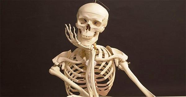 Sự thật thú vị về xương không phải ai cũng biết
