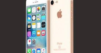 iPhone SE 2 lộ nguyên hình với mặt lưng kính