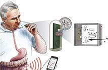 Bộ cảm biến chứa vi khuẩn phát sáng giúp phát hiện chảy máu trong ruột