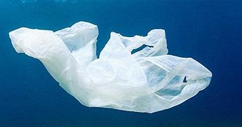 Cuộc cách mạng được thế giới mong chờ: Nhựa sẽ có thể được tái chế thành CO2 và nước
