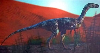 Phát hiện loài khủng long ăn thịt mới từng sống ở sa mạc