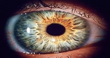 Công nghệ quét mống mắt có thể phân biệt được mắt người sống và người chết