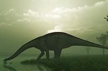 Phát hiện đặc biệt xương khủng long khổng lồ dài nhất thế giới