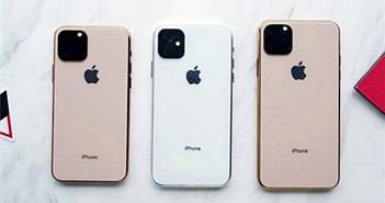 Bất chấp dự báo ảm đạm, chuỗi cung ứng vẫn tin vào sự thành công của iPhone 2019