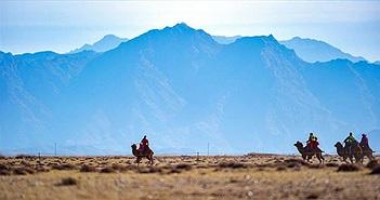 """17 tỉnh Mông Cổ cảnh báo """"cái chết đen"""", Trung Quốc sợ dịch chồng dịch"""