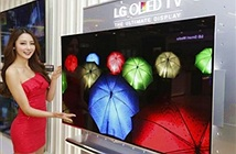 LG đầu tư gần 9 tỷ cho màn hình OLED, có thể để dùng cho iPhone