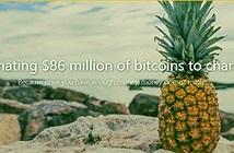 Quỹ Dứa: Nhà đầu tư Bitcoin bí ẩn cho đi 86 triệu USD vì lí do gì?