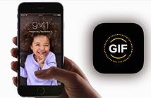 Hướng dẫn cách chuyển đổi Live Photos sang ảnh tĩnh trên iPhone