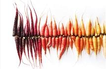 Những bức ảnh đầy sắc màu của một nữ nhiếp ảnh gia tạo ra từ rau củ quả