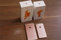 iPhone mới bình ổn giá, máy cũ liên tục lao dốc