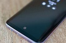Nút Home của Galaxy S8 liên tục dịch chuyển
