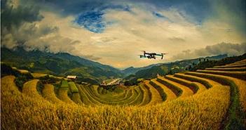 Việt Nam trong kỷ nguyên số: Triển vọng lạc quan nhưng vẫn có rủi ro