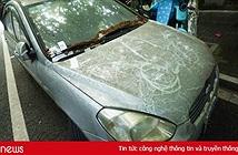 Vứt ôtô ở bãi 600 ngày không lấy, phí gửi xe 12.000 USD