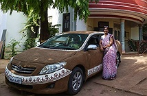 Chống nắng cho xe hơi, đại gia Ấn Độ... phủ phân bò