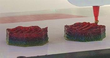 Sản xuất thực phẩm chức năng theo đơn nhờ công nghệ In 3D