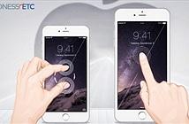 Apple sản xuất iPhone 6S từ tháng 7 với màn hình mới