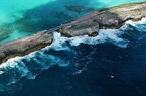 Tiếng huýt sáo trầm bổng vọng ra từ biển Caribean