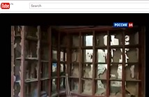 Dân mạng tố ký sự Syria của VTV24 đạo kịch bản kênh 24 của Nga