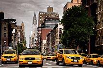 Các hãng taxi tại NewYork liên minh chống lại Uber