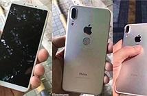 iPhone 8 có bộ nhớ gấp đôi Galaxy Note 8, lên tới 512GB