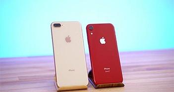 iPhone XR ở Việt Nam giảm giá sâu, rẻ hơn cả iPhone 8 Plus