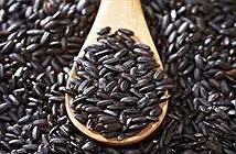 Tác dụng không ngờ của gạo nếp cẩm đối với sức khỏe
