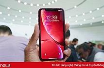 Vì sao nên đợi để mua iPhone XR vào 26/10 tới?
