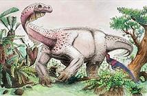 Phát hiện loài khủng long khổng lồ mới gấp đôi kích thước một con voi
