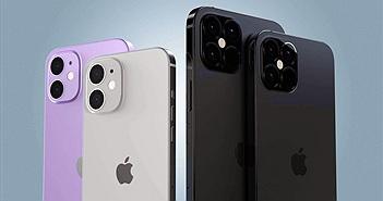 iPhone 12 mini sẽ không hỗ trợ mạng 5G, chip yếu hơn, giá khoảng 700 USD