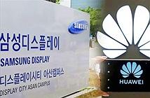 Mỹ gật đầu, Samsung có thể bắt tay với Huawei, nhưng vẫn chưa đủ