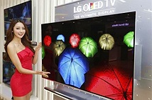 LG đầu tư 8,7 tỷ USD cho nhà máy sản xuất màn hình OLED