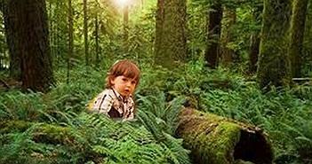 Câu chuyện lạc vào thế giới lòng đất của cậu bé 5 tuổi khiến các nhà khoa học bối rối