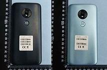 Cấu hình và thiết kế Moto G7 Play xuất hiện trên FCC