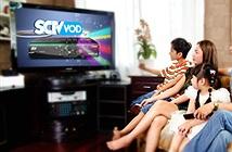 Từ 1/1/2016, SCTV nâng tốc độ Internet ở Hà Nội lên 1,5 lần