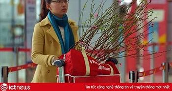 Vietnam Airlines, Jetstar vận chuyển cành mai, đào Tết Kỷ Hợi