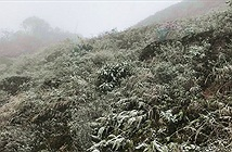 Chuyên gia khí tượng: Miền Bắc đón đợt rét đậm, rét hại khắc nghiệt nhất 10 năm qua