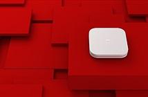 Xiaomi ra mắt Mi Box 4/4c hỗ trợ 4K HDR giá từ 40 USD