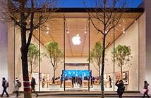 Apple tiếp tục lấn sân tại quốc gia đông dân thứ 2 thế giới