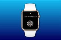 Apple Watch series 7 sẽ có Touch ID trong màn hình