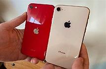 Đây là 4 lí do iPhone SE vừa rẻ vừa ngon