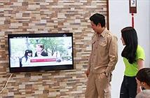 Xem hơn 20 kênh DVB-T2 miễn phí trên truyền hình cáp HTVC
