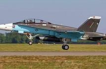 Mỹ định làm gì khi sơn F/A-18 giống hệt Su-34 Nga?