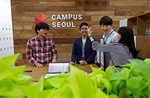 Sinh viên giỏi châu Á thích làm việc ở Google